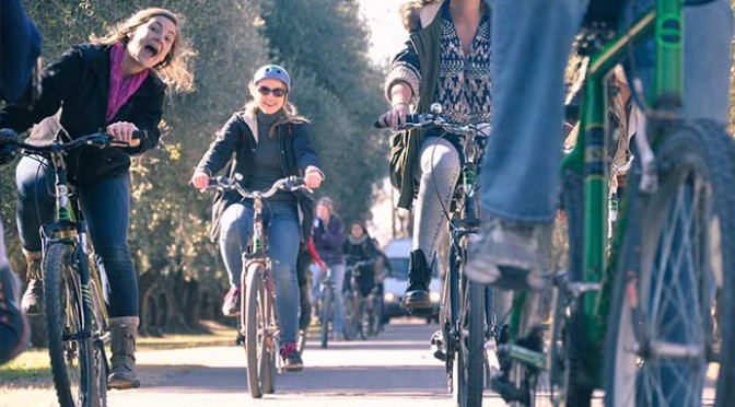 self-guided-bike-tour-through-vineyards-1