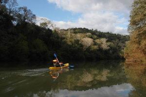 rainforest-experience-chacra-del-agua-1