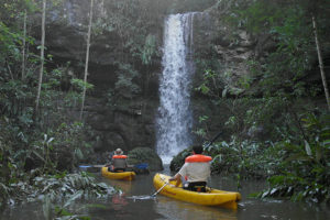 rainforest-experience-chacra-del-agua