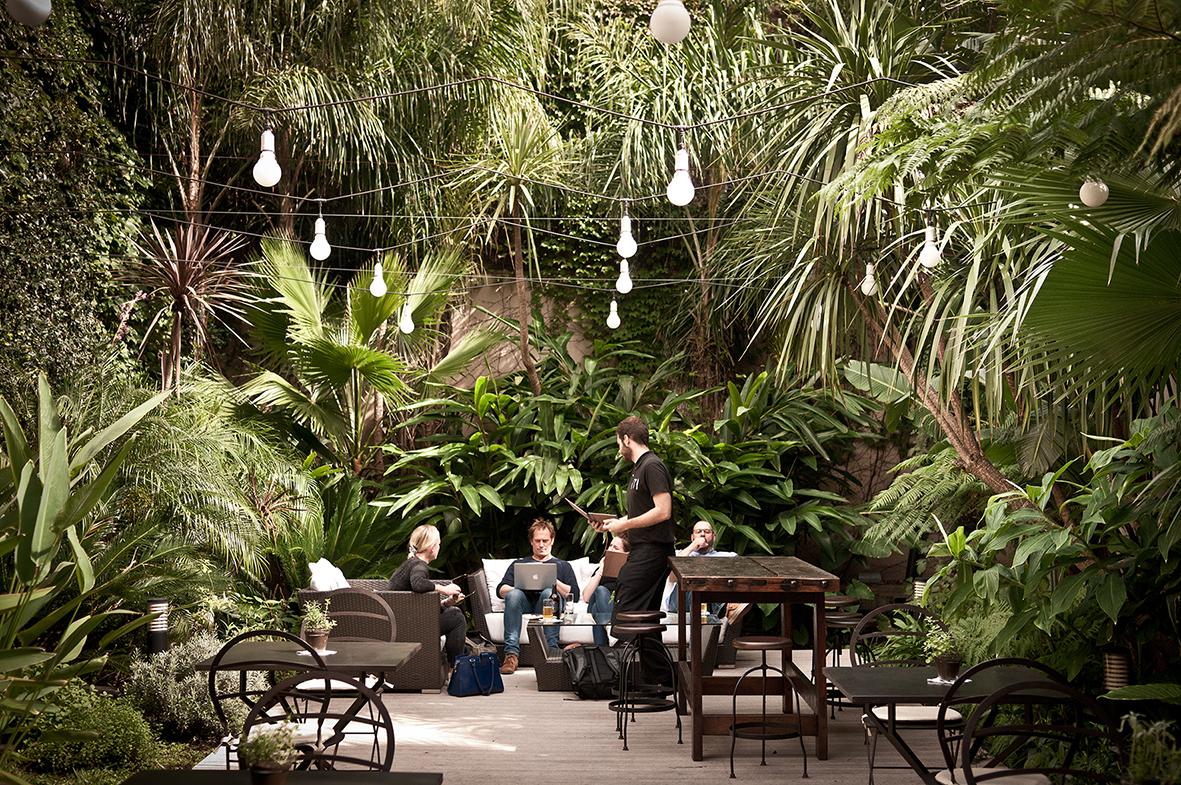 Garden at Fierro Hotel