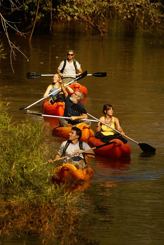 Kayaking at Yacutinga Nature Reserve