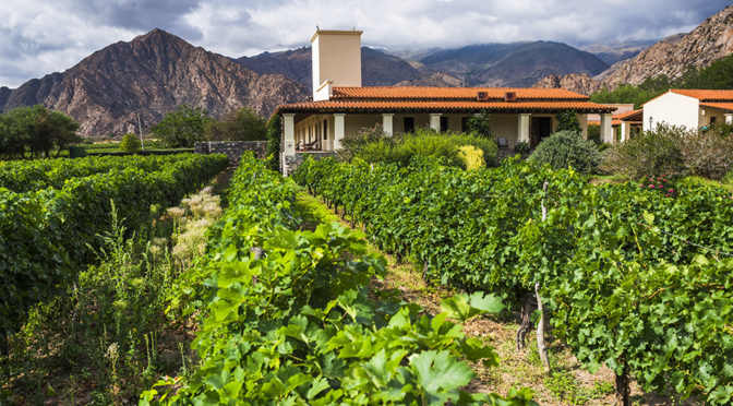 Viñas de Cafayate, vineyard framed hotel in Salta
