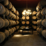 The art of winemaking in Mendoza