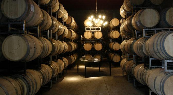 The art of winemaking in Mendoza
