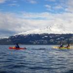Sea Kayak through the Beagle Channel