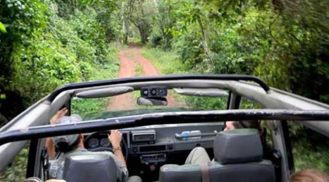 Trail of the pioneers safari Iguazu